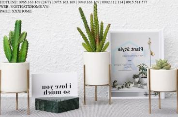 BÌNH LỌ HOA TRANG TRÍ X HOME HÀ NỘI SÀI GÒN HỒ CHÍ MINH XHOME1118