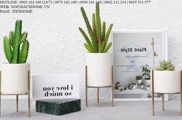 BÌNH LỌ HOA TRANG TRÍ X HOME HÀ NỘI SÀI GÒN HỒ CHÍ MINH XHOME2204